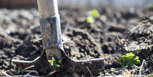 Entspannung: Gartenarbeit